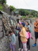 2015-Kölyök napközis tábor Badacsony